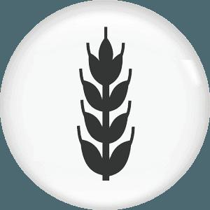 edilizia agro-industriale