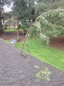 Roofing Contractor Vancouver, WA