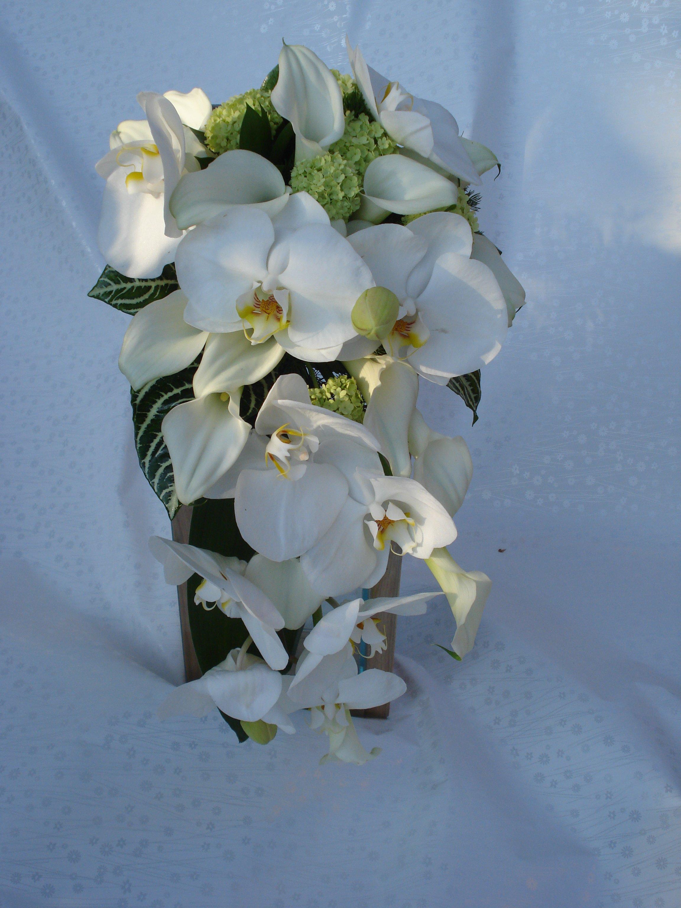 bouquet calle bianche phalaenopsis e viburo