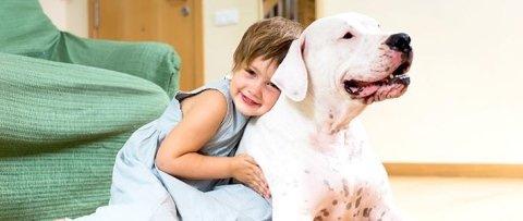 Vaccinazioni animali domestici