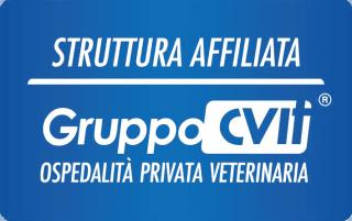 affiliati Gruppo CVit