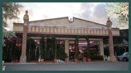 negozio piante
