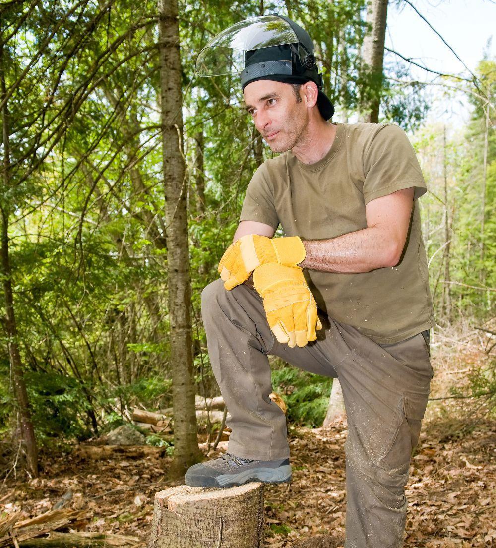 Arborist working in Milledgeveille, GA