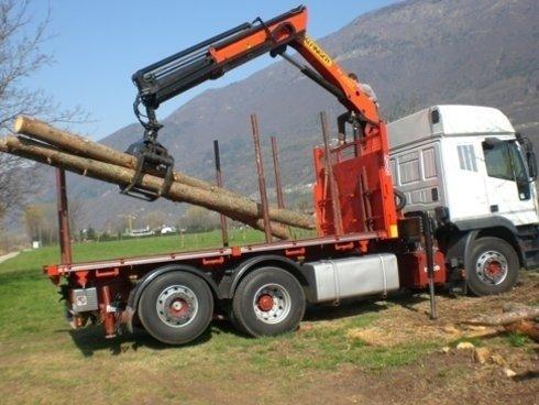 Camion con pinza forestale per caricamento tronchi