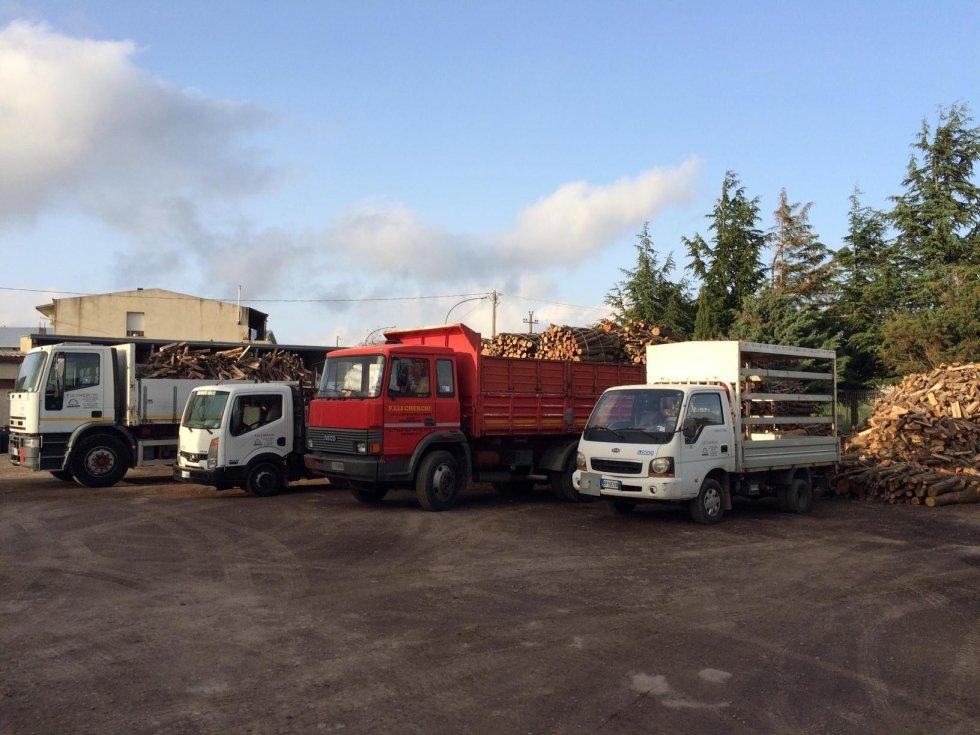 diversi camion per trasporto legna
