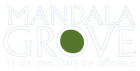 Mandala Grove logo