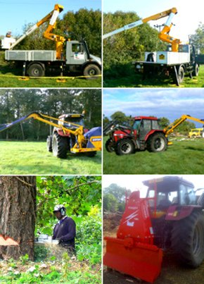 Hedge cutting - Gillingham - Vale Tree Surgeons Ltd -  Equipment Hire
