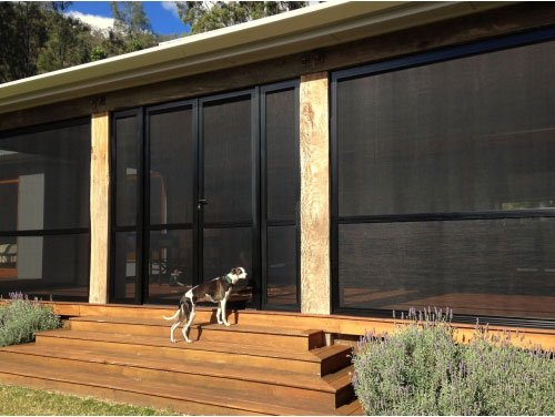 black screen porch and dog