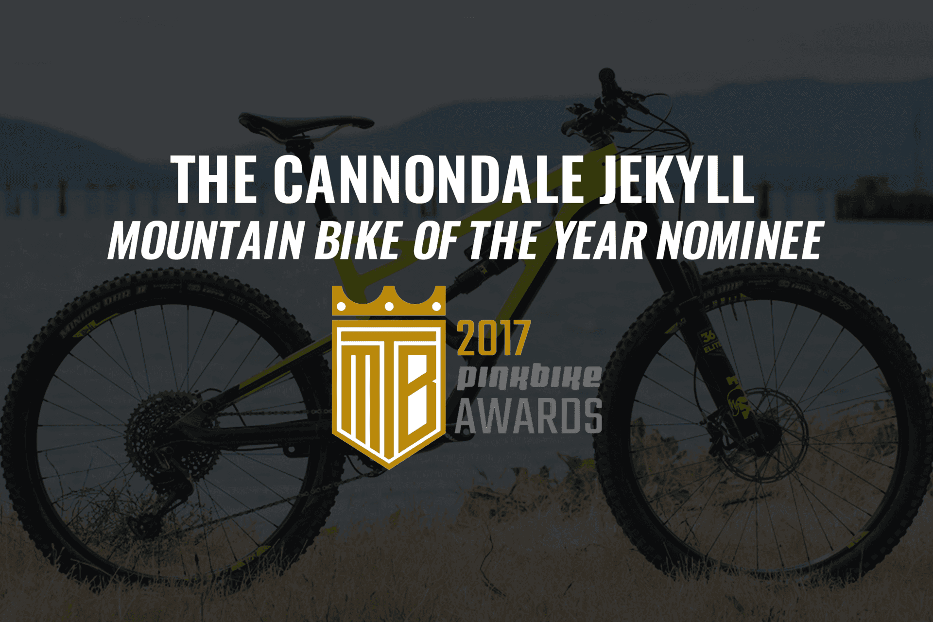 e1754e97fc4 Cannondale Jekyll - Mountain Bike of the Year Nominee