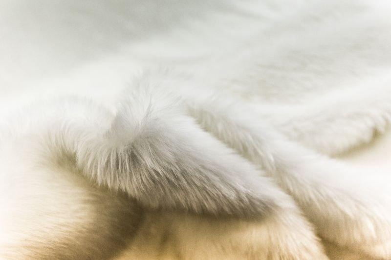 pelliccia sintetica orso bianco