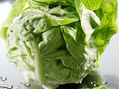 dell'insalata