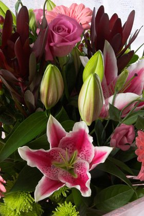 Flower delivery - Middlewich, Cheshire - Charlotte Rose Florist - Anniversary Flowers