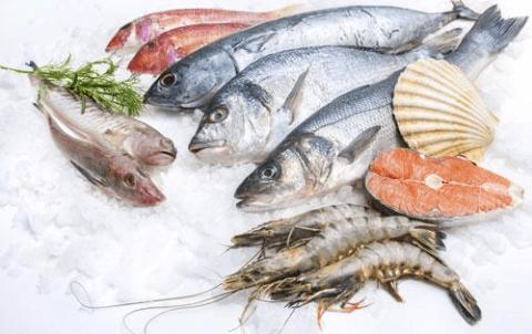 Ristorante pesce Genova