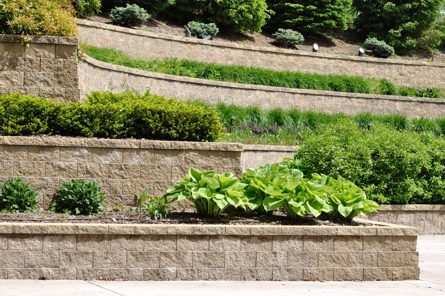 Commercial landscape services in Cincinnati, OH