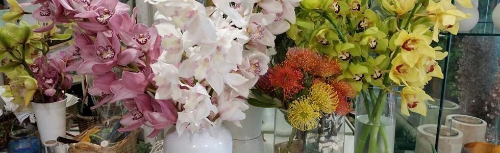 Vendita fiori Bologna