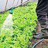 impianti d'irrigazione per orticultura