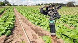 impianti di irrigazione per aree industriali