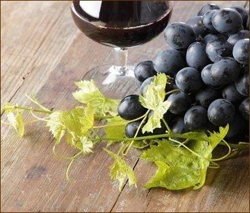 vendita online vini, i migliori vini italiani