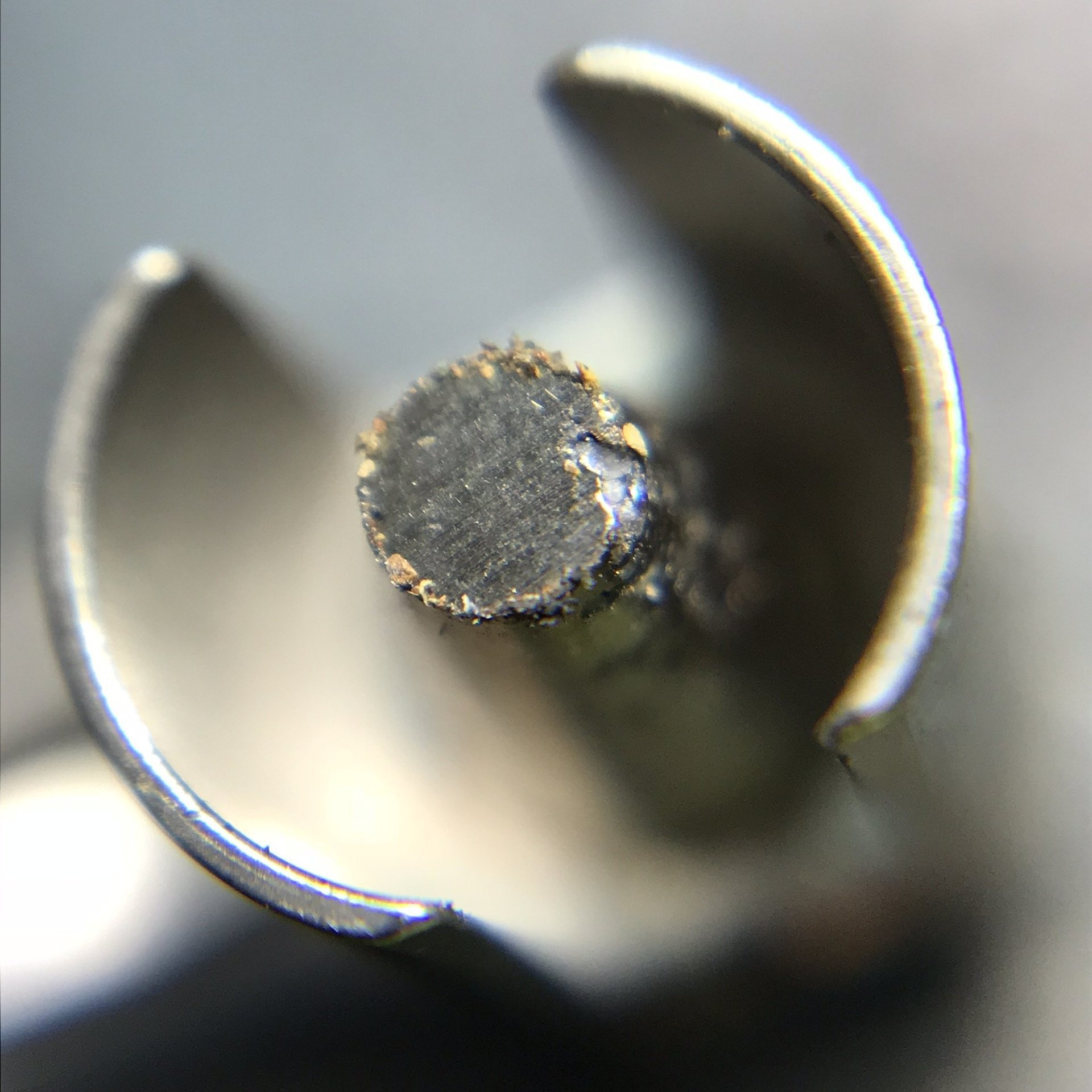 Accutron tuning fork with particles fouling them.