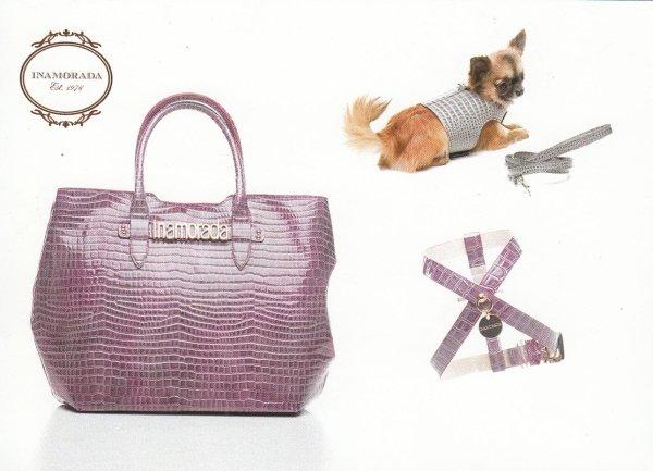 accessori coordinati per cani