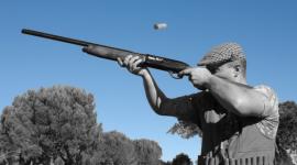 vendita bifilari, vendita fucili sovrapposti, vendita armi da caccia