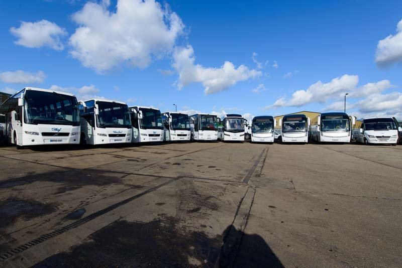 View of the fleet of coaches