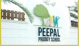 1 CBSE School in Coimbatore | Peepal Prodigy CBSE School