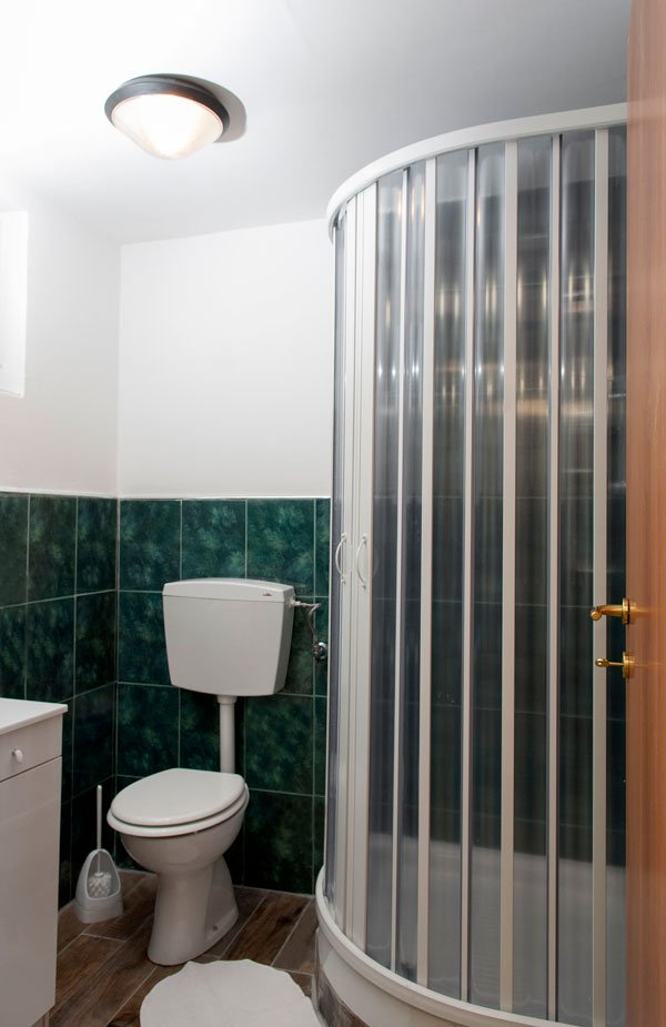 un bagno con piastrelle verdi,sulla sinistra il wc, sulla destra un box doccia e una lampada sul soffitto