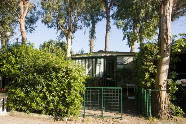 un cespuglio , accanto un piccolo cancello verde con un albero e davanti una casetta di color bianco e verde