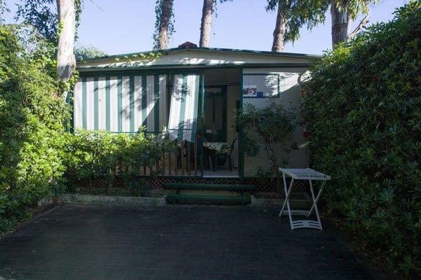un patio attorniato da cespugli,uno stendi biancheria sulla destra e di fronte una casetta bianca e verde