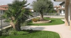 creazione di parchi giardini  terrazzi