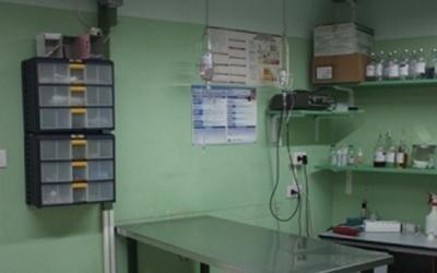 Tavolo operatorio veterinario
