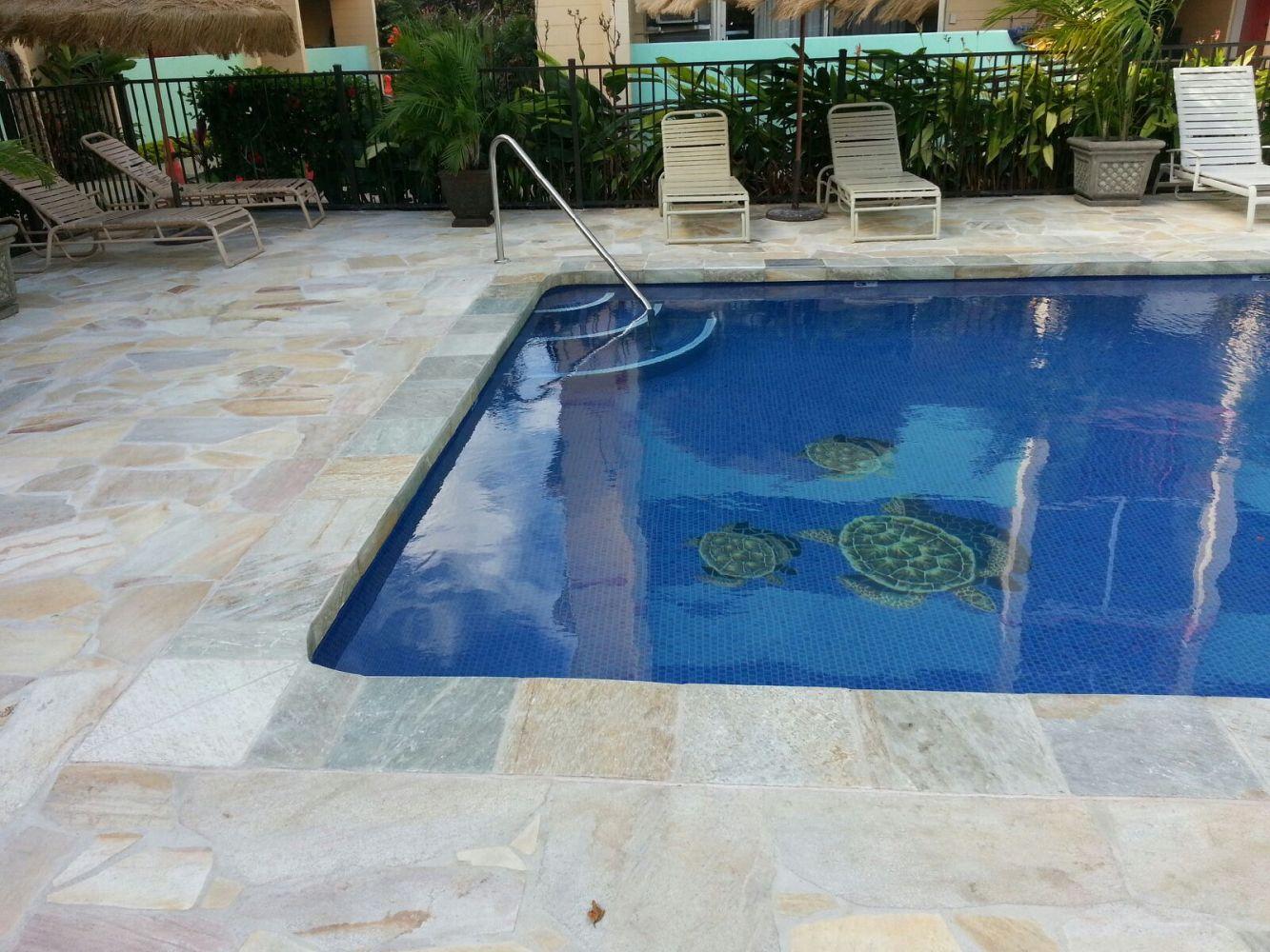 Jack 39 s tile stone inc tile pool design kailua hi for Pool design hawaii