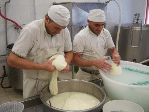 Preparazione formaggi e caciotte