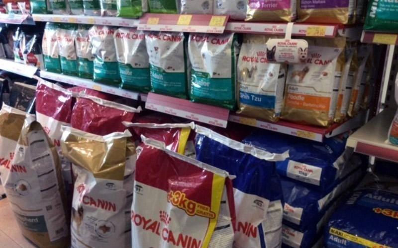 Confezioni cibo per cani