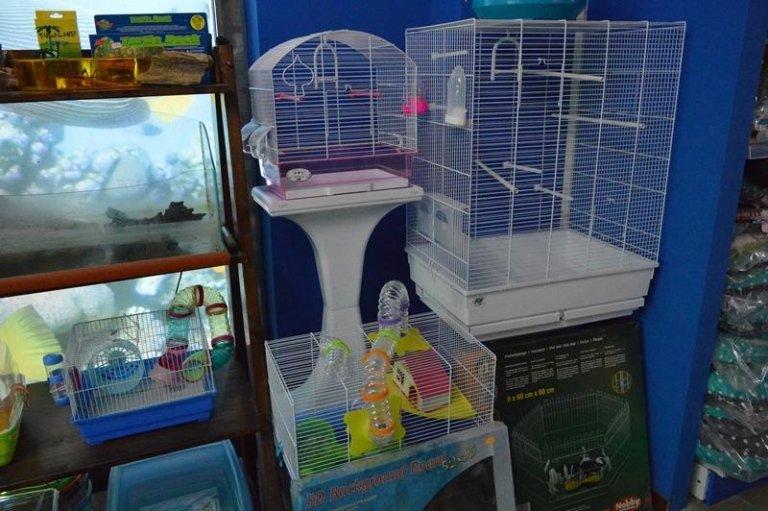 gabbie per uccelli e roditori