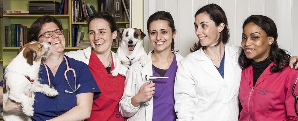 Ambulatorio Veterinario Risorgimento