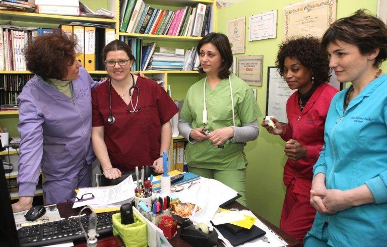 Veterinari