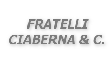 Autofficina F.lli Ciaberna & C.