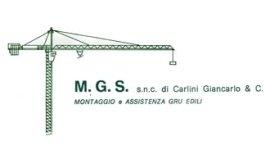 logo M.G.S. snc