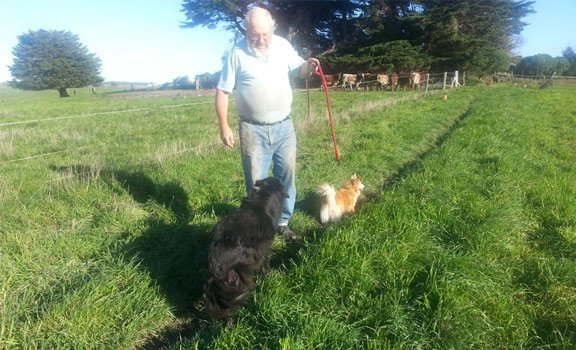 somerset kennels animal lover with dog