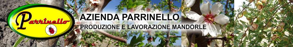 Azienda Parrinello-logo