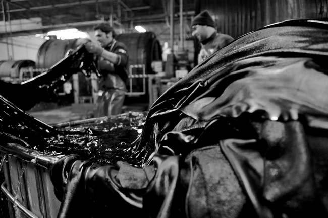 leather treatment