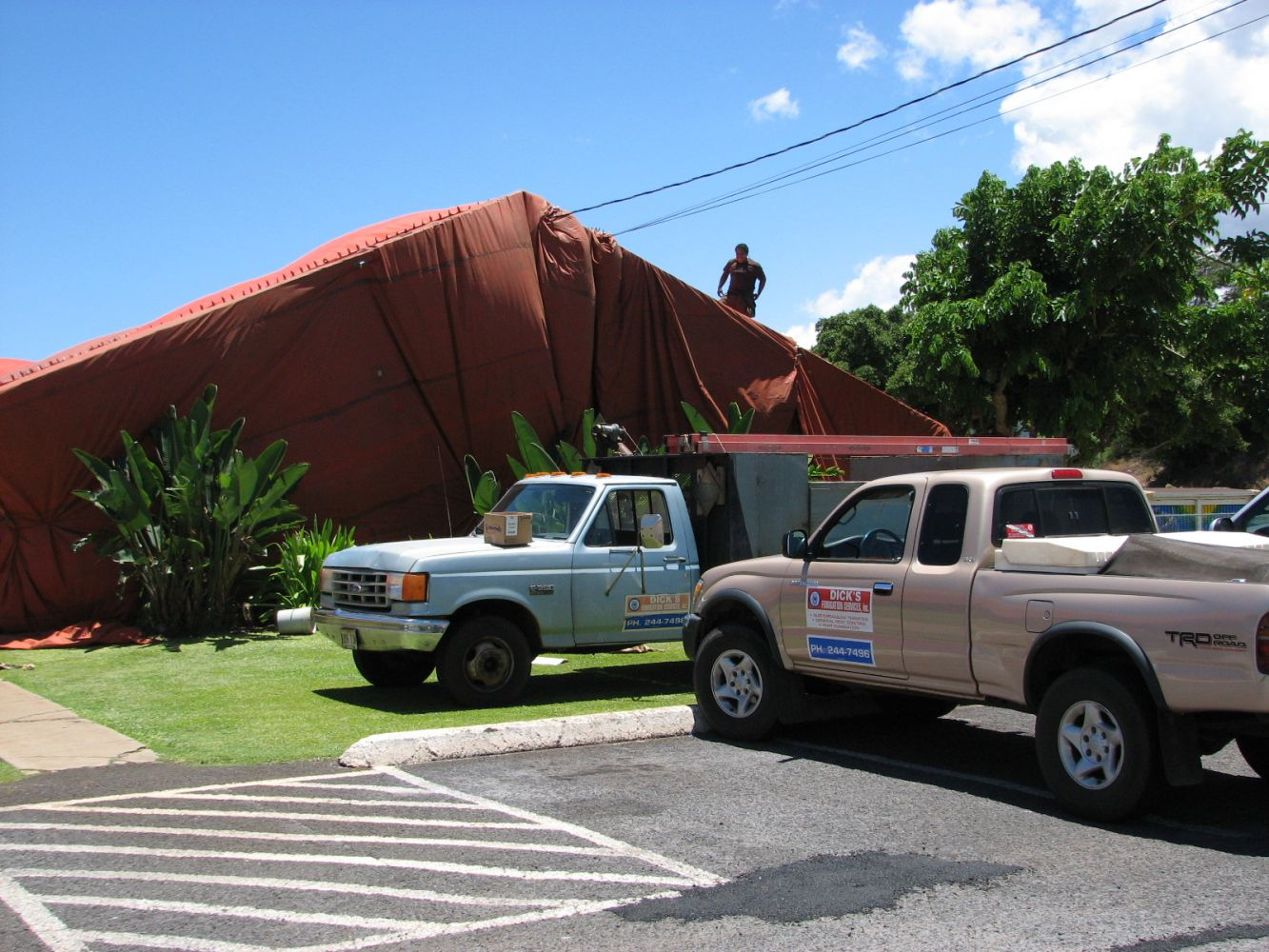 Pest and rodent control services in Wailuku, HI