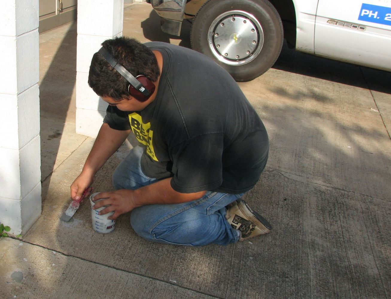 Pest and rodent control experts in Wailuku, HI