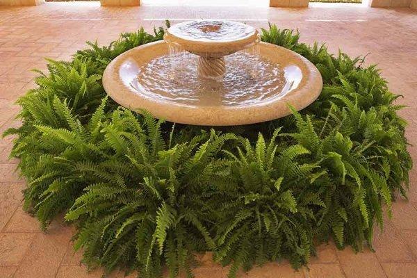 vasche per fontane