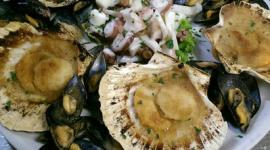 antipasti a base di pesce, cape sante, degustazione di pesce