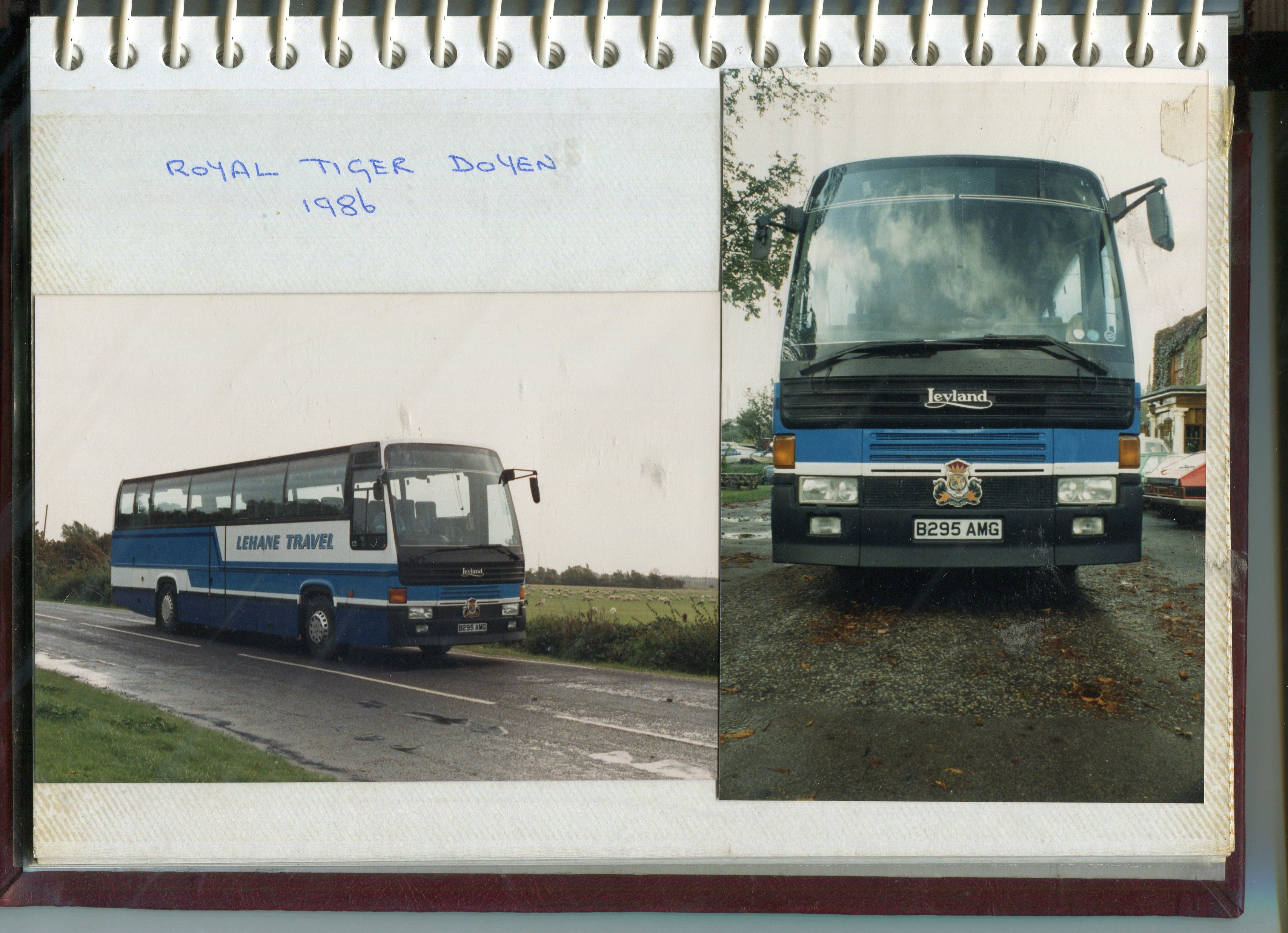 side and front view of the bus