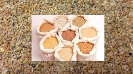 sacchetti di grano, sacchi di cereali, mangimi per animali da allevamento