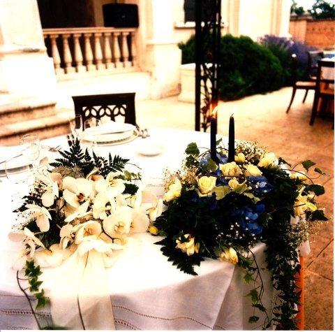 piante ornamentali per tavoli